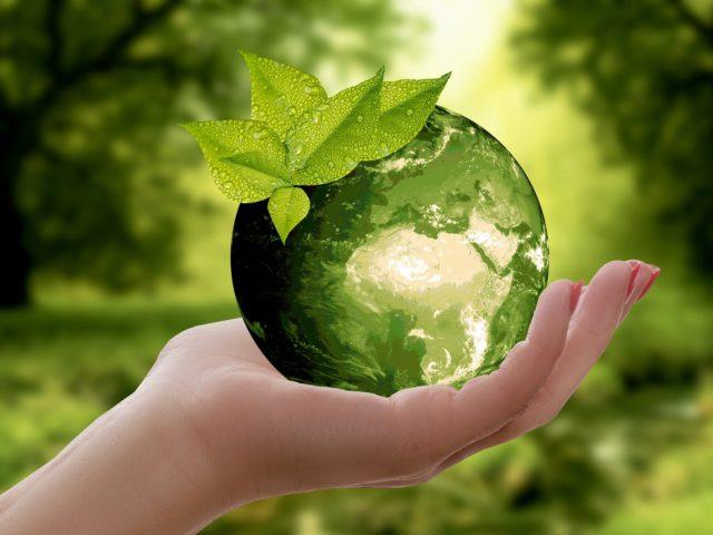Międzynarodowy Dzień Ziemi 22.04.2020